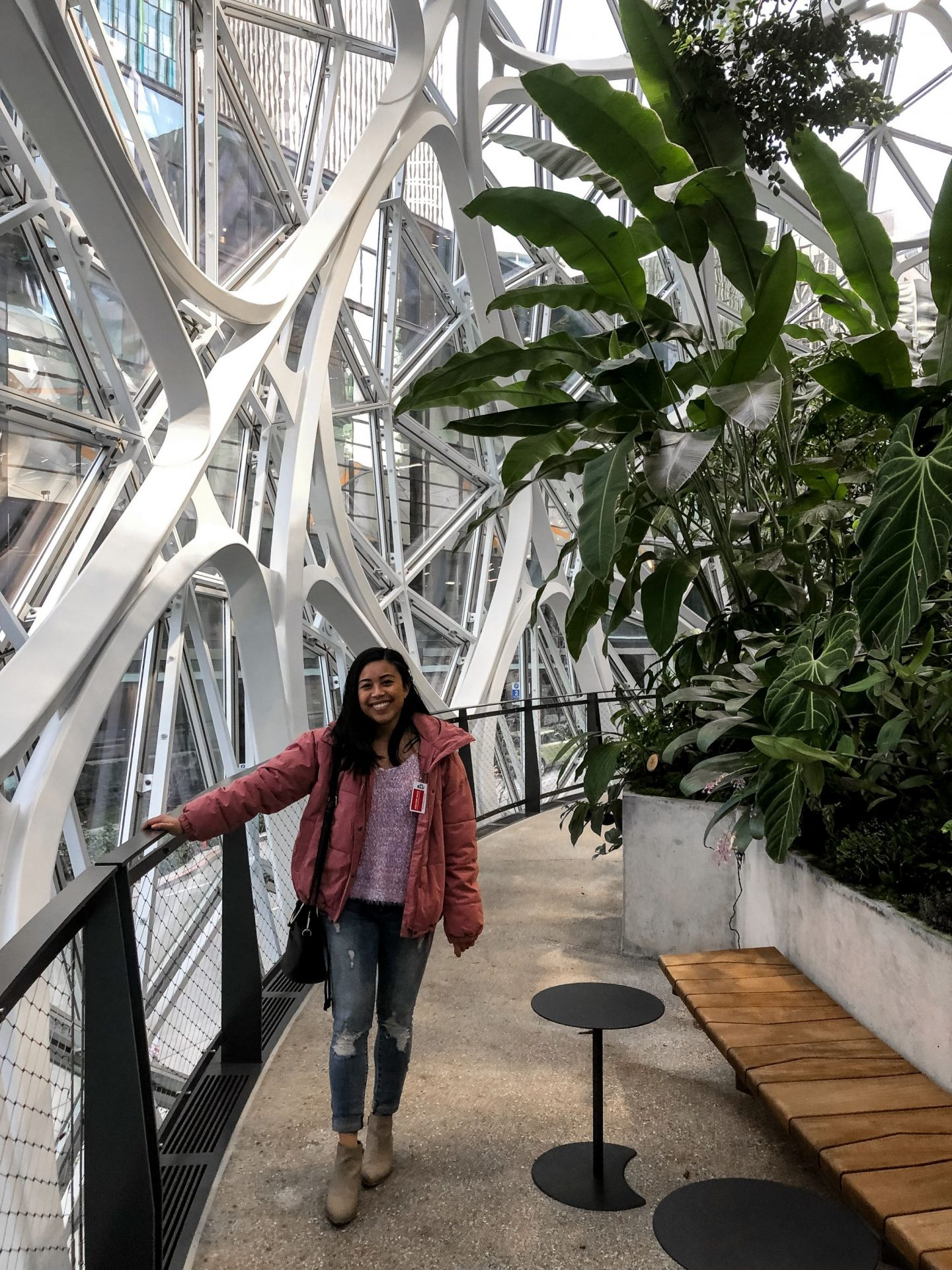 inside the amazon spheres