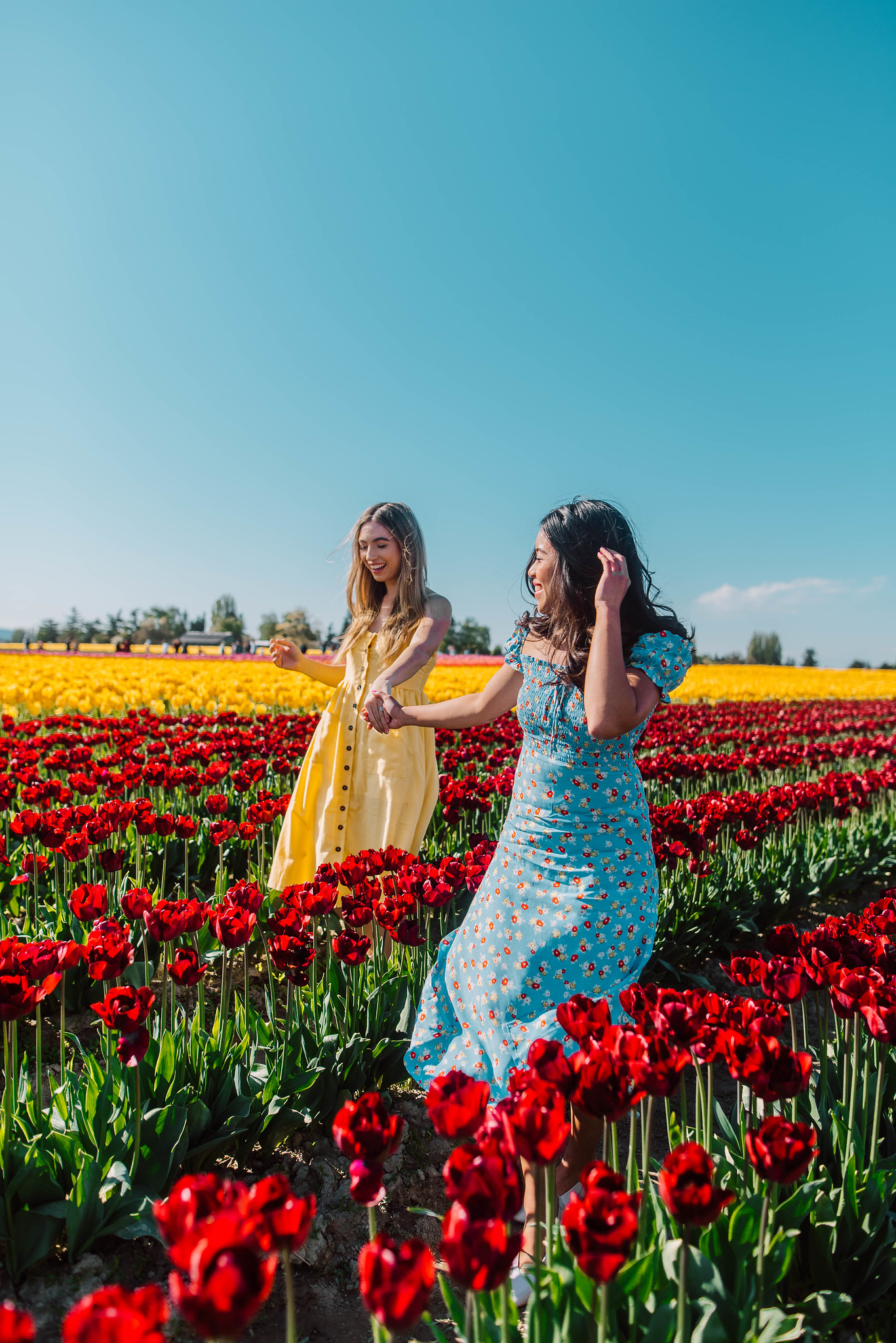 flower field photo shoot ideas