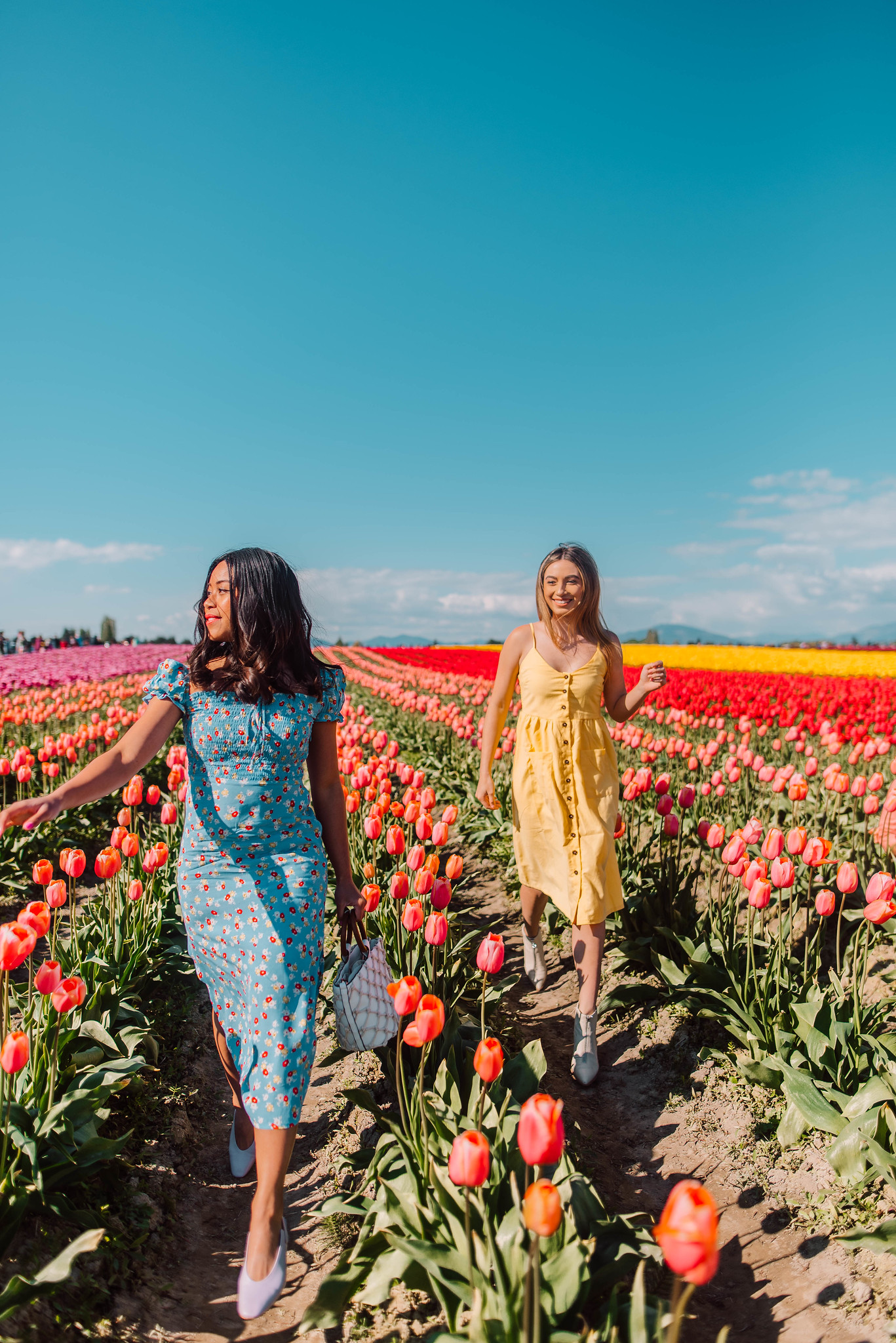 walk ahead of your friend - flower field photography ideas