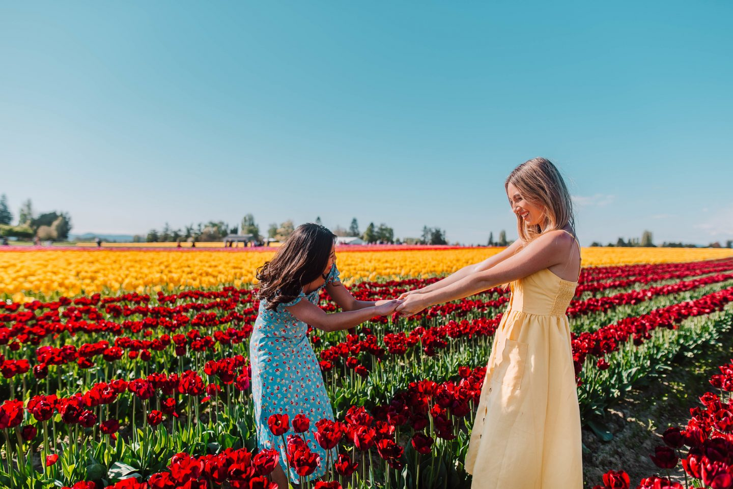 hold hands in the flower field
