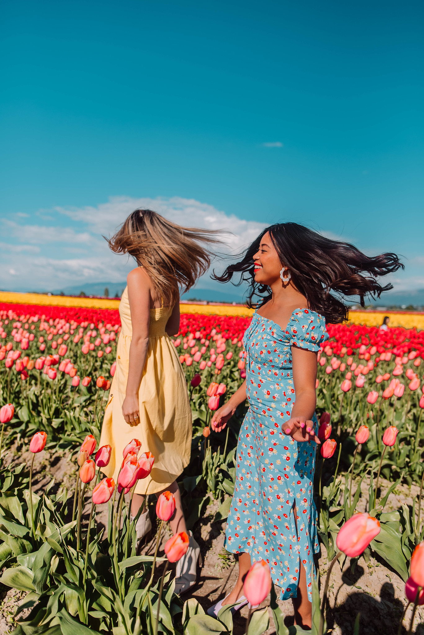 6 Flower Field Photo Shoot Ideas To Try