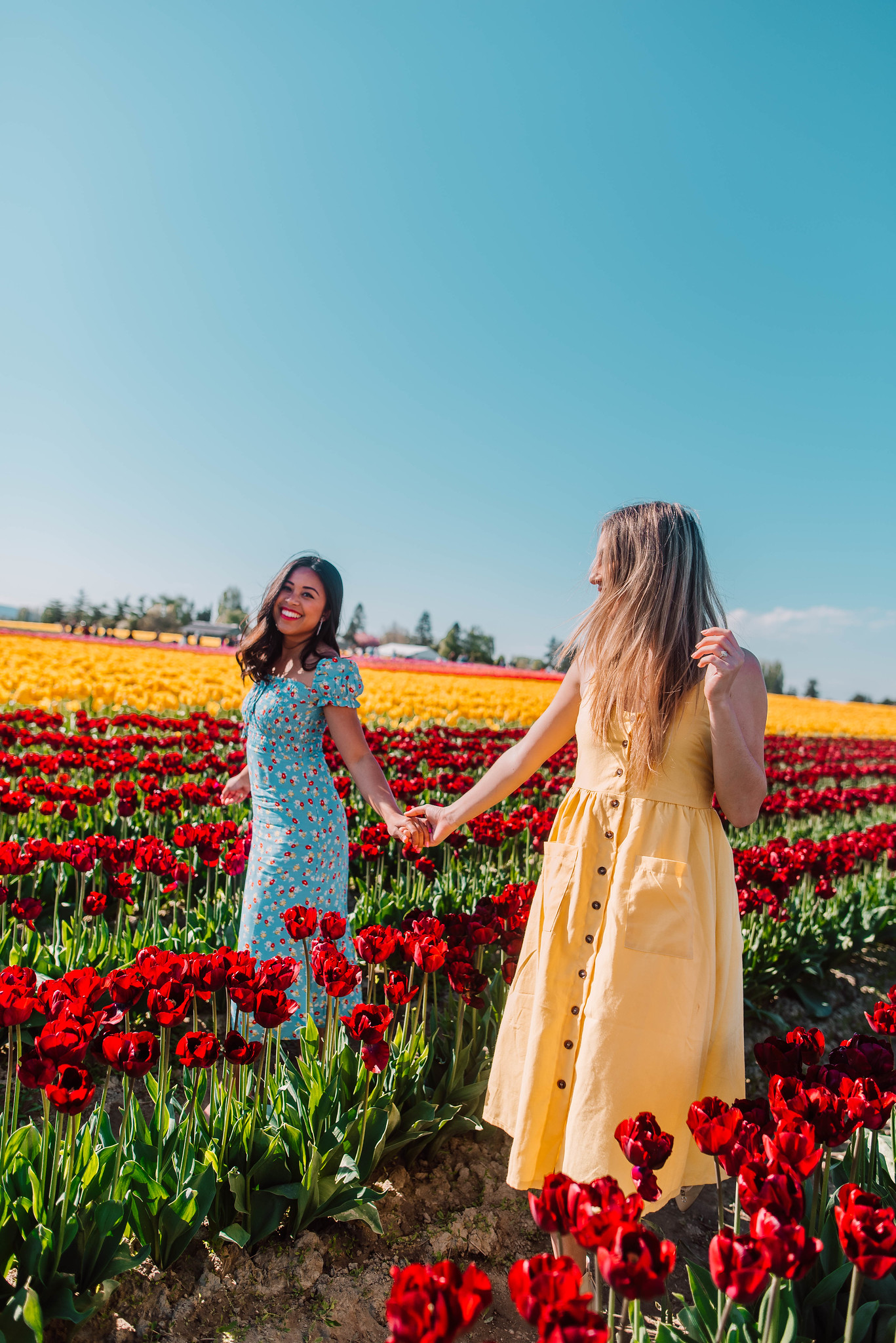 holding hands with your best friend in the tulip field