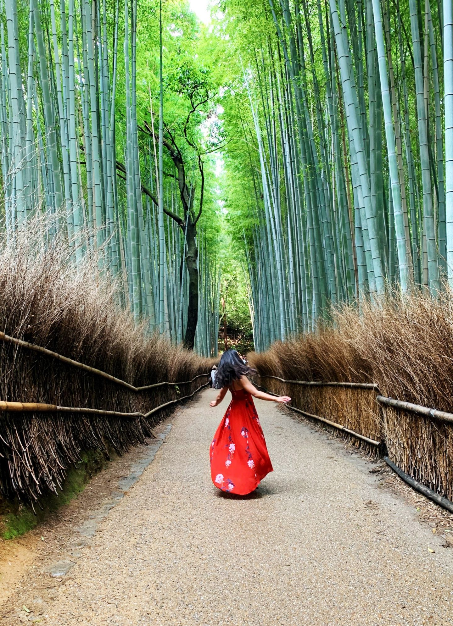 10 Things to Do in Kyoto Your First Time
