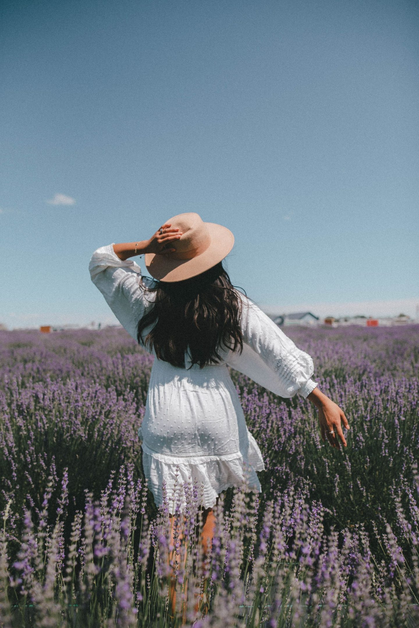 Lavender field aesthetic – lavender field photo shoot outfit – lavender field – lavender field dress – Emma's Edition – things to do in Eastern Washington – Explore Washington State - Seattle blogger – Eastern Washington – Quincy Washington