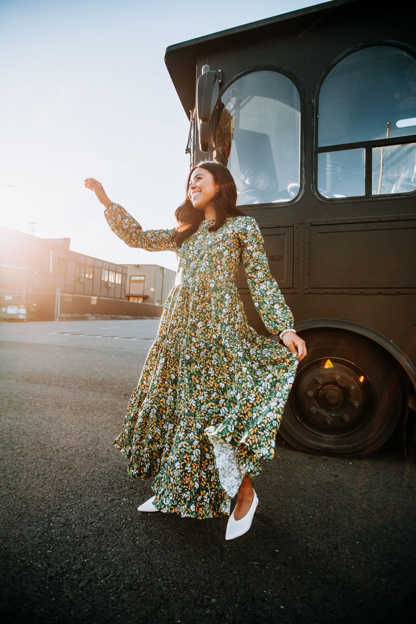 Anthropologie Ambassador - Anthropologie Dress