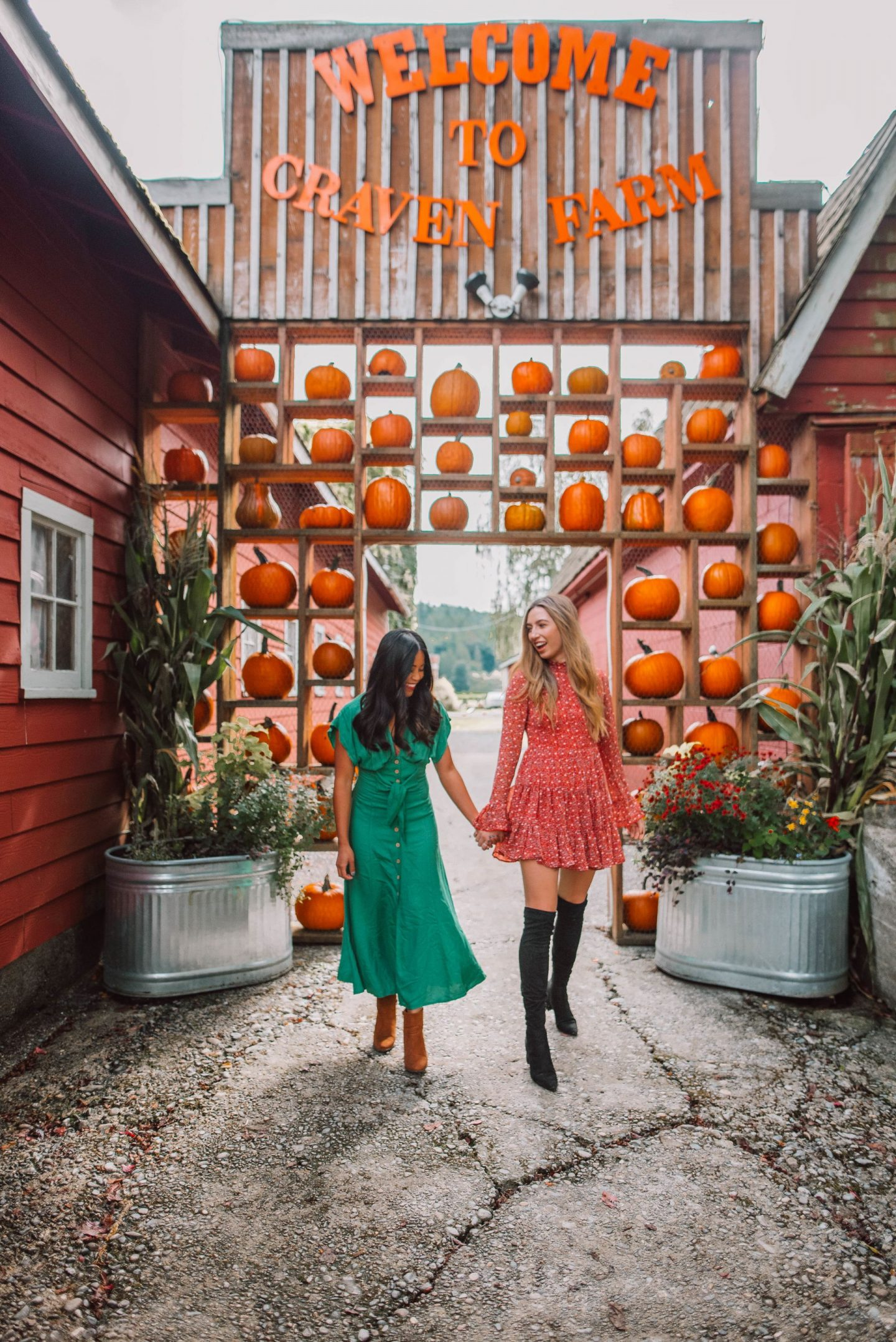 Craven Farms Pumpkin Patch - Snohomish, WA - image copyright @emmasedition - www.emmasedition.com