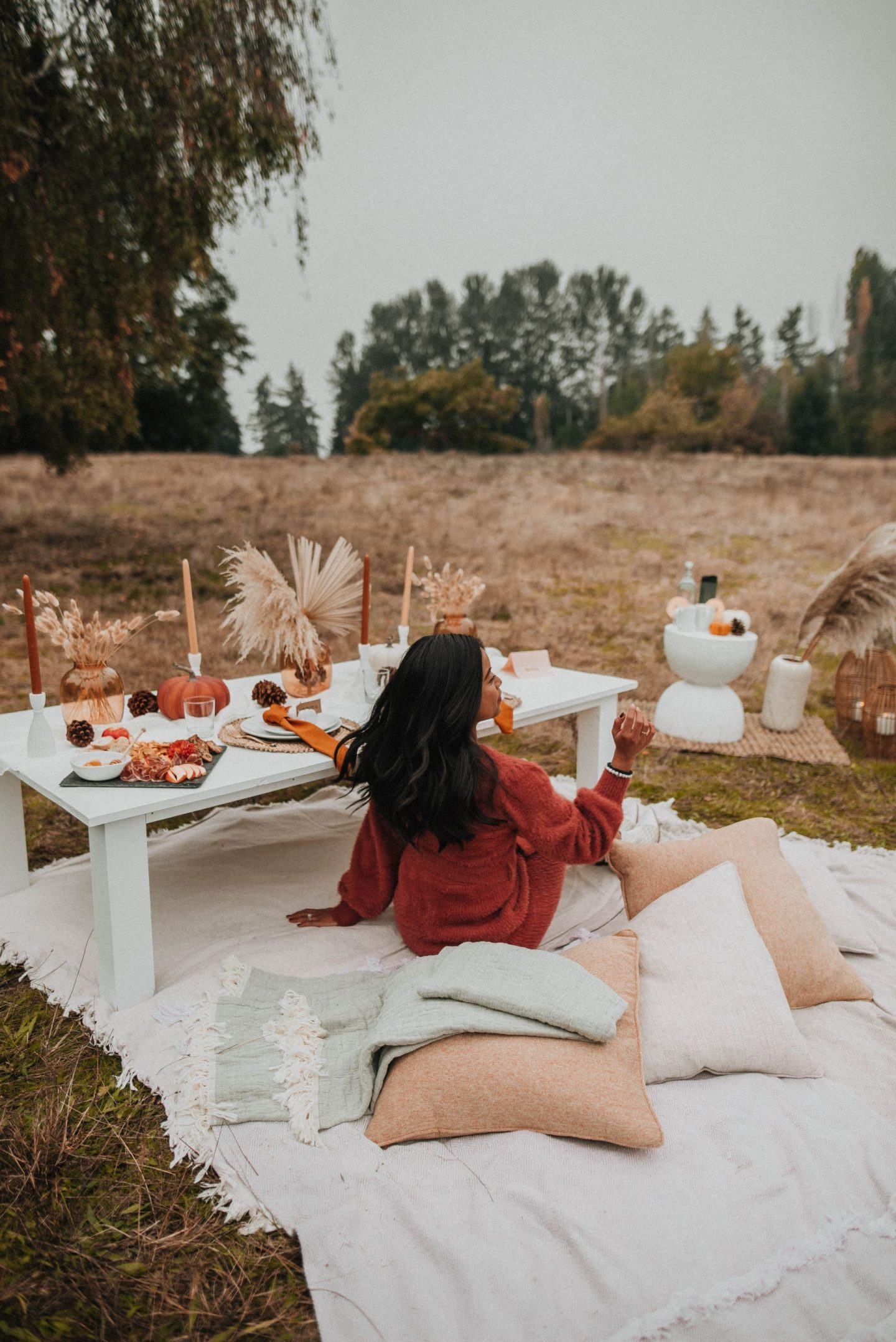 Fall picnic ideas - engagement photo shoot ideas in Kirkland, WA - image from www.emmasedition.com